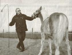 Jippe Burmania uit Wier met een van zijn Haflingers. Hij vertrouwt dieren meer toe dan mensen, zo blijkt uit zijn boek 'Skeind'. Foto LC/Gitte Brugman (gescand)